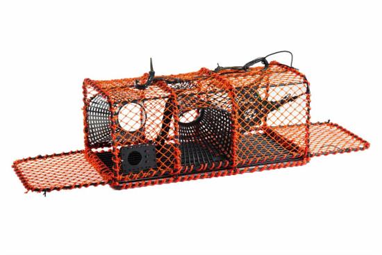 Bilde av Hummerteine oransje 12 kg